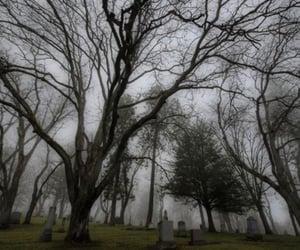 autumn, cemetery, and gloomy image