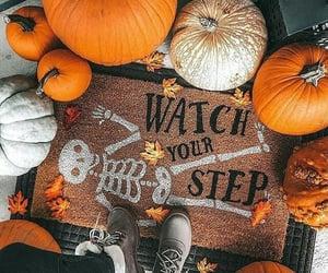 Halloween, pumpkins, and fall image
