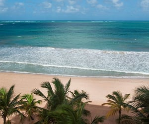 puerto rico and resort image
