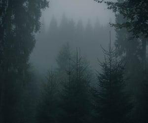 aesthetic, dark, and fairy image