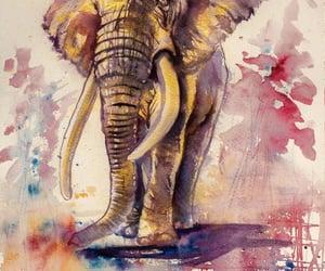 dibujos, elefante, and elephant image