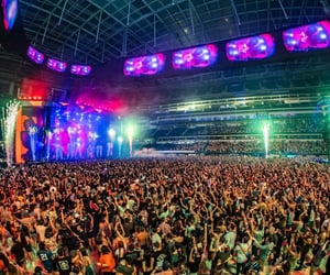 music and electronic dance music image