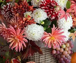 belleza, flores, and cesta image