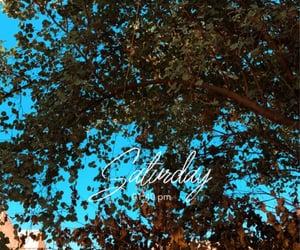 sky, سماء, and tree image