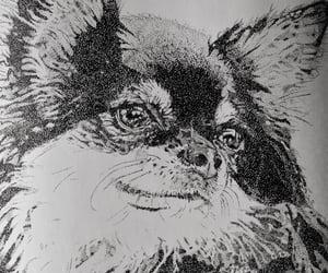 art, siniirr, and chihuahua image