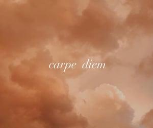 carpe diem, life quotes, and soft theme image