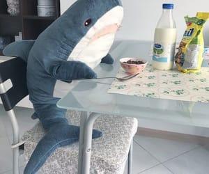 shark, blue, and cute image