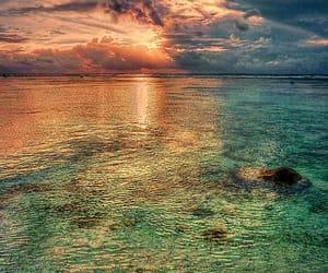 new zealand, sea, and sunset image
