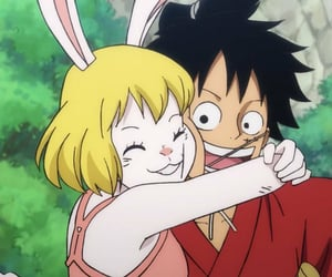 anime, carrot, and one piece image