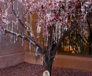 rosaries and tree image