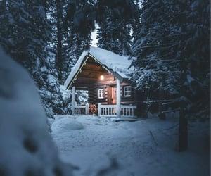 beautiful, light, and winter image