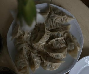 aesthetic, dumplings, and food image