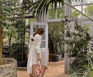 greenhouse, cottagecore, and plants image