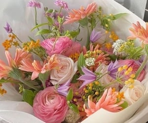 beautiful, flowers, and colorful image