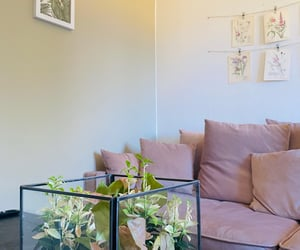 Dream, living room, and flower image
