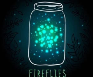 childhood, lightening bugs, and firefly image
