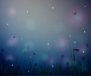 firefly, nighttime, and glowing image