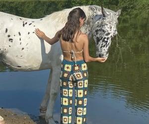 animal, animals, and countryside image
