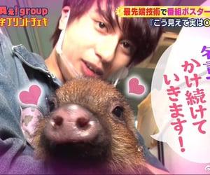 小島健 and aぇ!group image