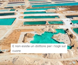 frasi, quotes, and italiane image