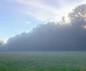 aesthetic, foggy, and scenery image