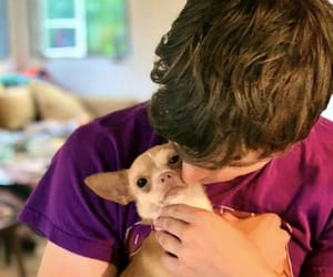 13 reasons why, miles heizer, and dog image