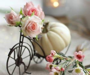 Pumpkin Floral ♡