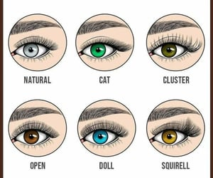 adore, eyelashes, and cosmetics image