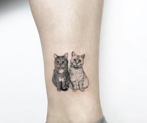 animals, art, and cats image
