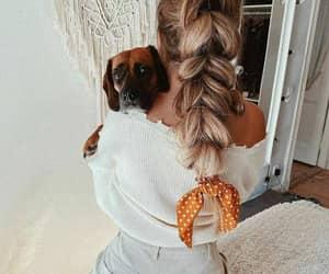 cachorro, salaovirtual, and trança holandesa image