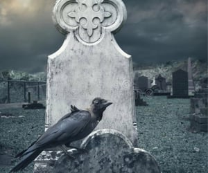 cemetery, raven, and Halloween image