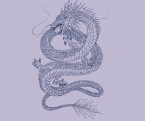 dragon, wallpapers, and wallpaper image