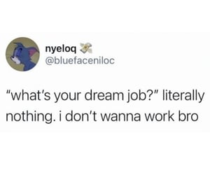 accurate, dream job, and funny image