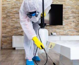 pest control and exterminator control image