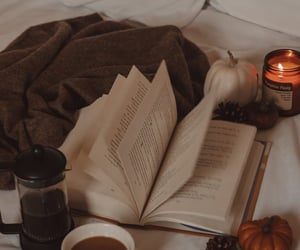 aesthetic, autumn, and book image
