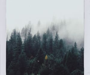 dreamy, indie, and foggy image