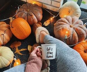 autumn, fairy lights, and pumpkins image