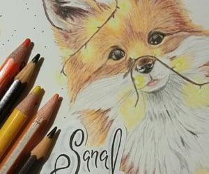 lapices de colores, arte, and dibujo image
