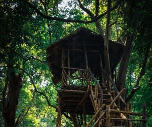 adventure, resorts, and kerala image