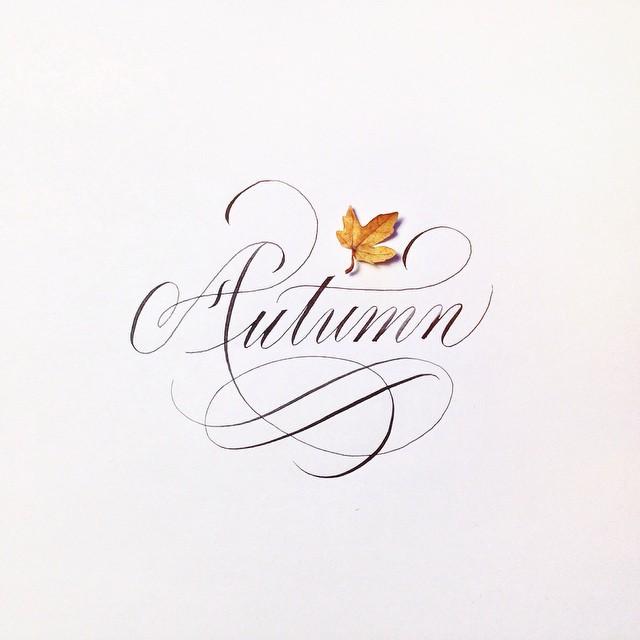 autumn, rain, and article image
