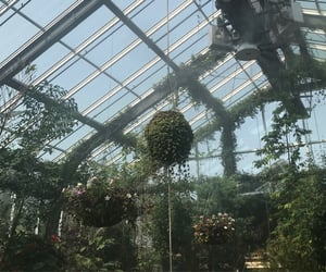 aesthetic, greenhouse, and green image