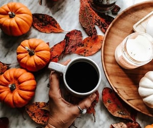 autumn, coffee, and autumn vibes image