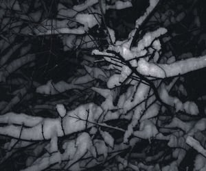 january, snow, and albania image