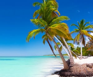beaches, escape, and beach lovers image
