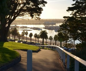 australia, fitness, and morning image
