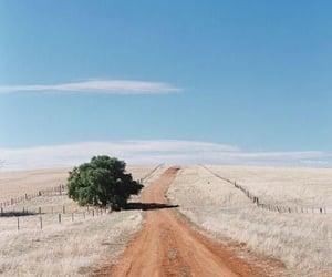 aesthetic, australia, and beige image