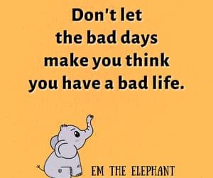 elephant, cute, and positivity image