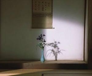 aesthetic, cinema, and cinematography image