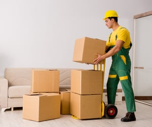 movers, furniture moving, and moving boxes image