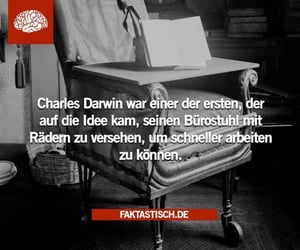 inspiration, zitate, and charles darwin image